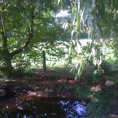 NEU: der Campingteich zum Entspannen